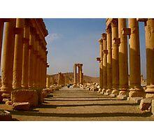 Palmyra, Syria Photographic Print