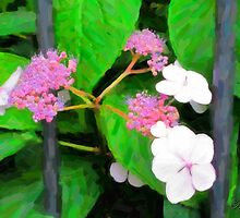 behind the fence by Karen  Securius