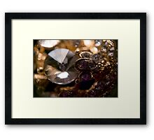 Diamonds and Gold SuperMacro 7 Framed Print