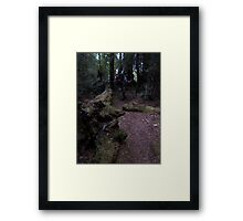 Ty on the Trail Framed Print