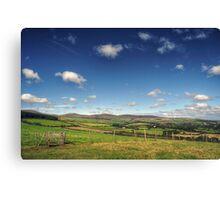 A Walk Through the Countryside Canvas Print