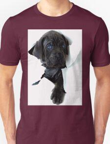 Peek a boo puppy T-Shirt