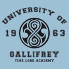 University Of Gallifrey by Royal Bros Art