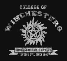 College Of Winchesters by Royal Bros Art