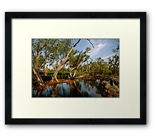 Rivers in the outback Framed Print