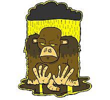 Monkey Depression Photographic Print
