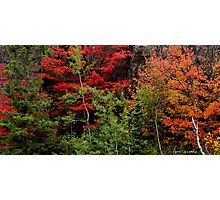 Sudbury Ontario Fall Colors Photographic Print
