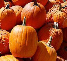 Pumpkins! by hispurplegloves
