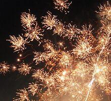 fireworks! by hispurplegloves