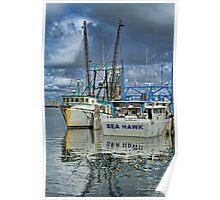 Sea Hawk Under Cover Poster