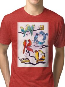 The Bird is the Word Tri-blend T-Shirt