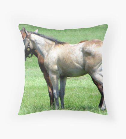 I don't know, what do you feel like doing, Marty? Throw Pillow
