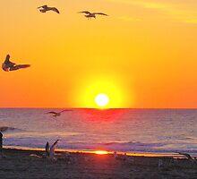 Watching The Sun Rise by ©Dawne M. Dunton