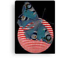 butterfly and ball  Canvas Print