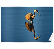 The Hunting Heron Poster