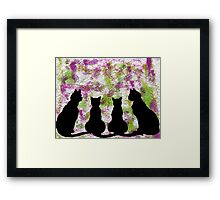 Cat CRAZY Framed Print