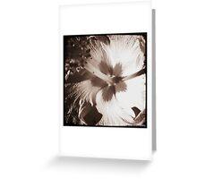 Flower Power... Greeting Card