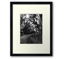 Forest Drive Framed Print