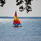 Sailing, Sailing Over the Lake So Blue by Sandra Fortier