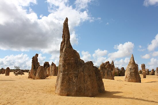The Pinnacles by Finkie