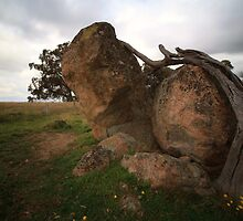 Nature's Sculptures by JFStockton