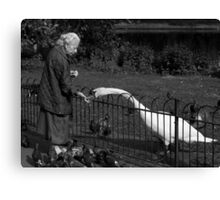 Old Lady & The Swan Canvas Print