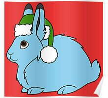 Light Blue Arctic Hare with Christmas Green Santa Hat Poster