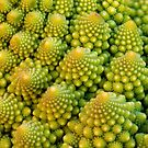 Romanesco Vortex by Keld Bach
