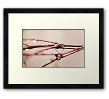 a drop in time.. Framed Print