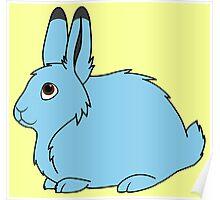 Light Blue Arctic Hare Poster