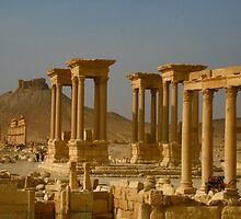 Palymyra in Syria by Citisurfer