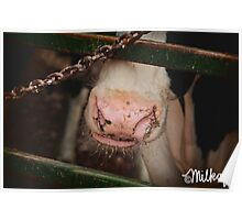 Cheesy Smile Poster