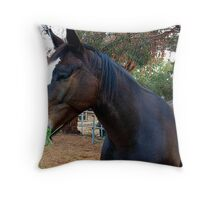 Equus Breakfasts Throw Pillow