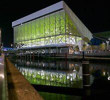 Aquatics Centre at Night by John Gaffen