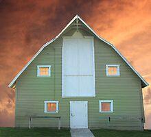Barn Fire by Steve  Taylor