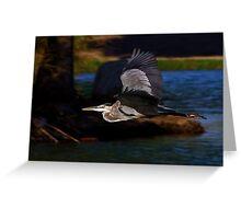 091512 Great Blue Heron Greeting Card