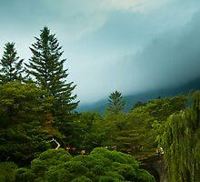 Park at Bulguksa by Gabor Pozsgai