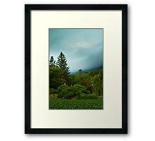 Park at Bulguksa Framed Print