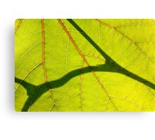 *Love Veins* Canvas Print