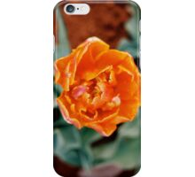 Orange Tulip iPhone Case/Skin