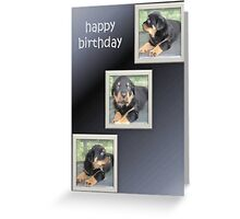 Rottweiler Collage Birthday Greeting Greeting Card