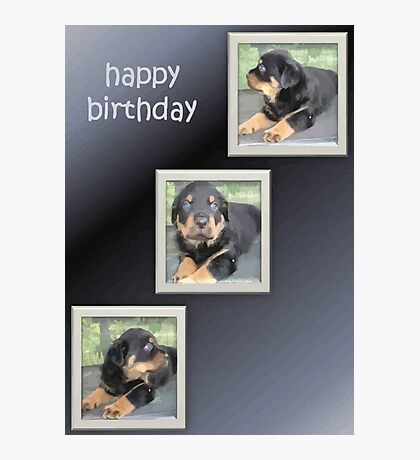 Rottweiler Collage Birthday Greeting Photographic Print