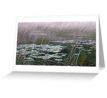 Pond scene Greeting Card