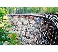 Kinsol Trestle by Ernie Dickey Photographic Print