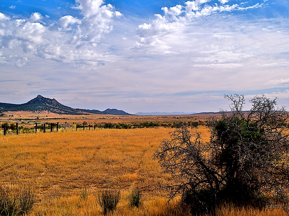 Ravaged landscape, South Australia. by johnrf
