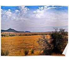 Ravaged landscape, South Australia. Poster