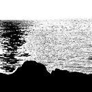 Lake Ontario Sunset by David Schroeder