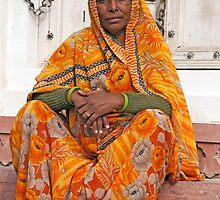 Fabulous Orange Sari by phil decocco