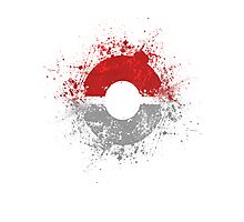 Poke'ball Photographic Print
