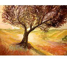 Impressionistic Landscape Photographic Print